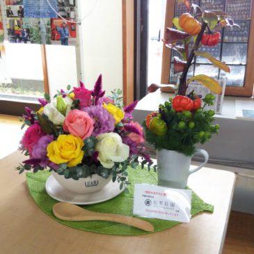 周防大島産の花卉